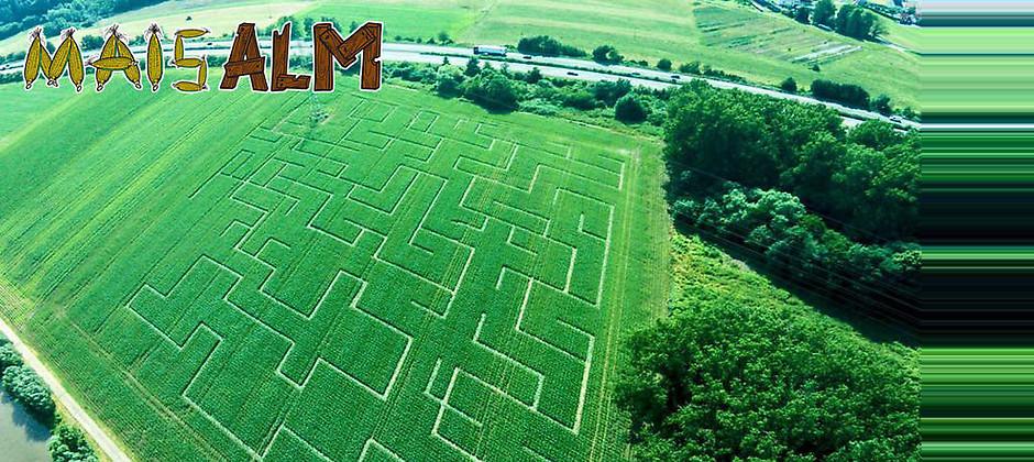 Gutschein für Das 30.000 qm Maislabyrinth von Maisalm