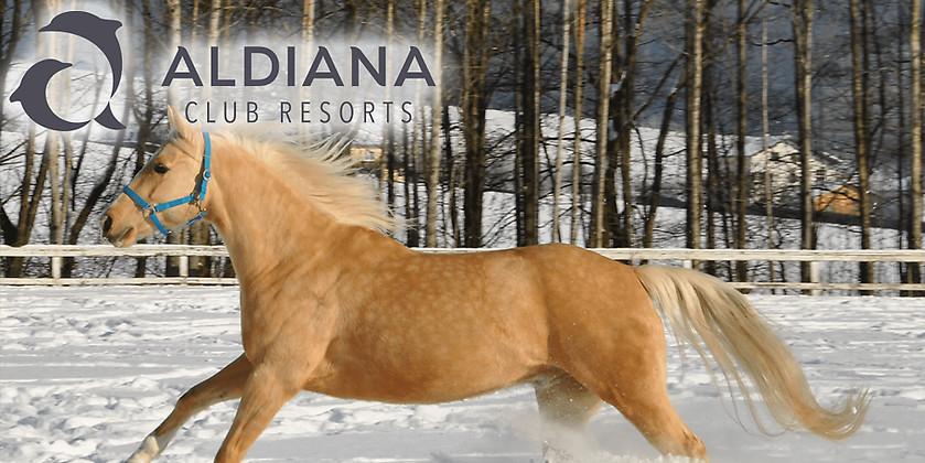 Gutschein für Winterkurztrip zum halben Preis – Natur pur in Österreich von Aldiana Club Ampflwang
