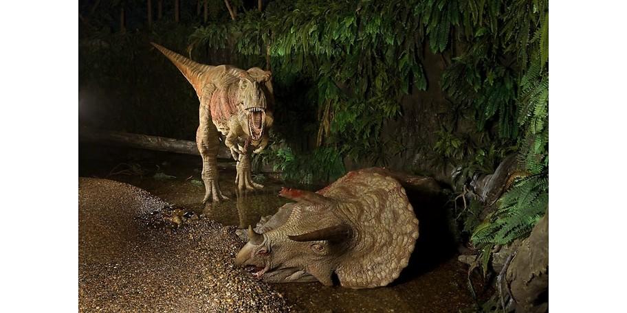 Reptilien aus der Urzeit