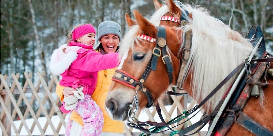 Was und wie viel bekommt das Pony zu fressen, wie pflege ich es richtig und natürlich darf das Winter-Ponyreiten nicht zu kurz kommen