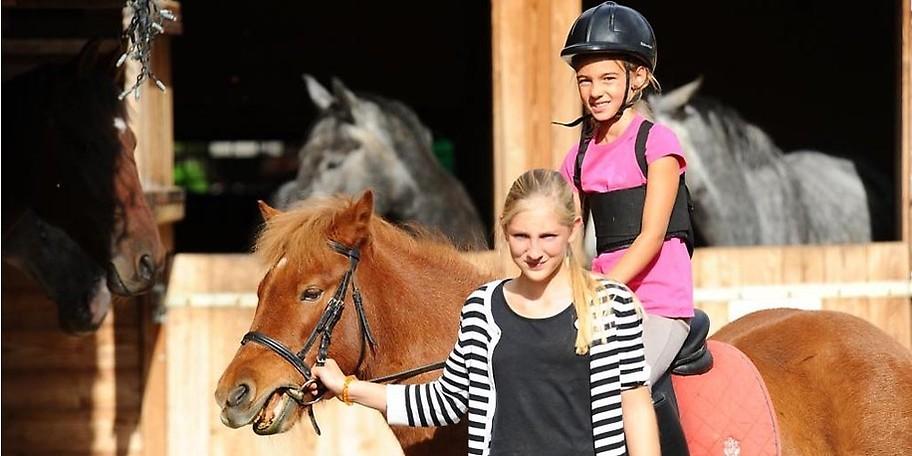 Die Tierliebhaber unter den Kleinen werden von Kesselgrubs Pferdewelt begeistert sein