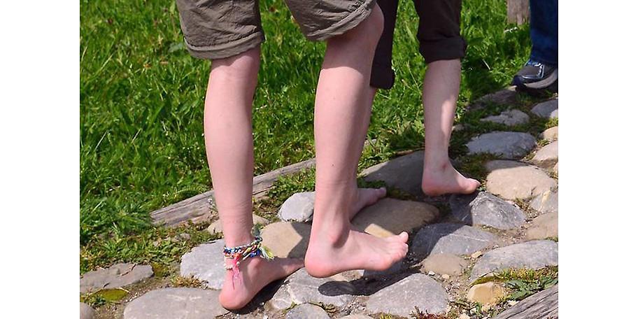 Ein besonders sinnliches Erlebnis ist der Barfußpfad im skywalk allgäu Naturerlebnispark
