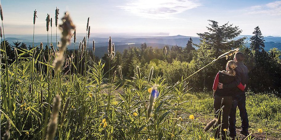 Unbebaute Weitsicht bis zu den Alpen im Hotel Das Weitblick Allgäu