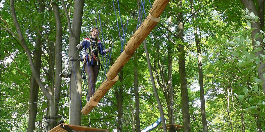 Fassen Sie Mut und klettern Sie perfekt gesichert immer höher in die Baumwipfel