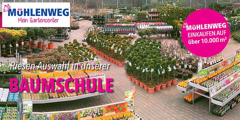 Gutschein für Ihr Gutschein für den Gartenfachmarkt in Bielefeld von Gartencenter Mühlenweg